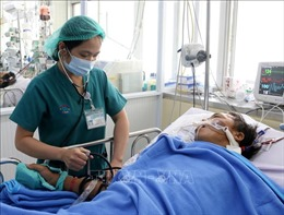 Bệnh nhân nguy kịch do rắn hổ mang chúa cắn sắp được xuất viện sau 22 ngày điều trị