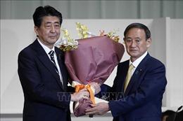 Ông Yoshihide Suga giành thắng lợi trong cuộc bỏ phiếu bầu Chủ tịch LDP