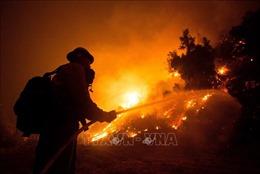 California chạy đua với thời gian để dập tắt 27 đám cháy rừng
