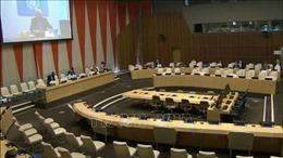 Liên hợp quốc kêu gọi các bên tham chiến tại Yemen chấm dứt thù địch