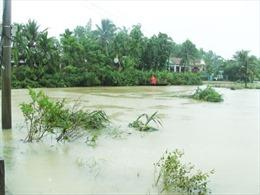 Khánh Hòa tập trung ứng phó mưa bão