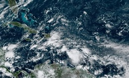 Bão mạnh sắp đổ bộ Nicaragua, Honduras