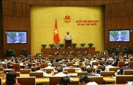 Ngày 3/11, Quốc hội thảo luận tại hội trường về kinh tế - xã hội
