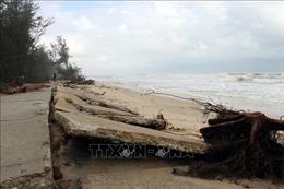 Sạt lở bờ biển nghiêm trọng ở Thừa Thiên – Huế