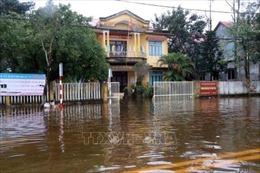 Ứng phó bão số 13: Thừa Thiên - Huế di dời trên 19.600 hộ dân đến nơi an toàn