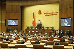 Ngày 11/11, Quốc hội tiến hành công tác nhân sự và thông qua Nghị quyết về kế hoạch phát triển KT-XH năm 2021