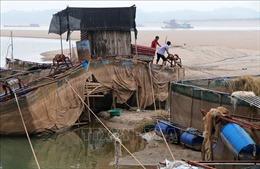Sông Đà cạn kỷ lục, người nuôi cá lồng lao đao