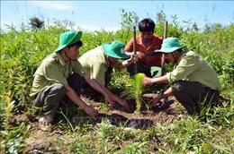 Dựa vào dân vùng đệm để quản lý, bảo vệ rừng