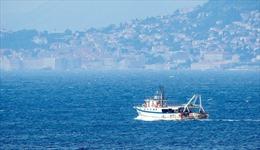 Croatia, Slovenia và Italy thông qua tuyên bố chung về biển Adriatic