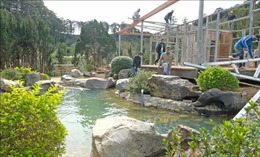 Vụ làng biệt thự chiếm rừng trái phép ở Lâm Đồng: Xác định thêm chủ của 8 căn nhà