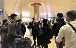 Đưa 244 công dân Việt Nam từ Israel về nước