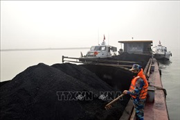 Bộ Tư lệnhVùng Cảnh sát biển 1 tạm giữ 500 tấn than không rõ nguồn gốc