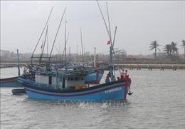 Ngư dân Phú Yên vươn khơi đón Tết trên biển