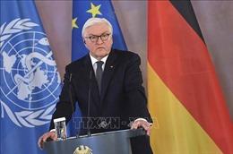 EU hy vọng Tòa án Hiến pháp Đức ủng hộ gói cứu trợ COVID-19