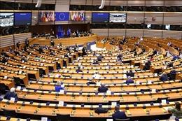 Thủ tướng Hungary tìm kiếm liên minh mới trong Nghị viện châu Âu
