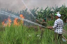 Kiểm tra phòng, chữa cháy rừng khu bảo tồn thiên nhiên Lung Ngọc Hoàng