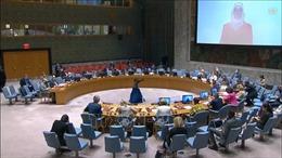 Việt Nam kêu gọi duy trì hỗ trợ nhân đạo cho Syria trong bối cảnh tiến trình chính trị bế tắc
