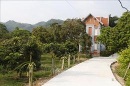 Thực hiện Nghị quyết về 'Tam nông': Chuyển biến mạnh mẽ ở Tuyên Quang