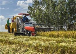 Hoàn thiện hệ thống thể chế quản lý nhà nước trong lĩnh vực nông nghiệp