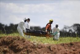 220km đất bị bùn lầy bao phủ sau vụ vỡ đập tại Brazil