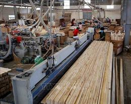 Bộ Công Thương ban hành quy định chống gỗ dán 'đội lốt' xuất xứ Việt Nam