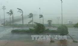 Dự báo một số cơn bão mạnh ảnh hưởng tới Trung Bộ và Nam Bộ từ nay đến cuối năm