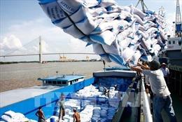 Xuất khẩu gạo: Nên vận hành theo cơ chế thị trường