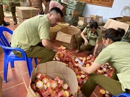 Thu giữ 20.000 mỹ phẩm nước ngoài không hóa đơn, chứng từ tại Hà Giang