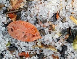 Có thể xuất hiện mưa đá, dông lốc diện rộng vào giáp Tết