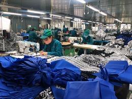 Xuất khẩu vực dậy trong đại dịch nhờ động lực từ các FTA