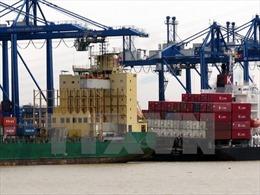 Liên kết là yếu tố sống còn cho doanh nghiệp logistics