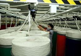 Tập đoàn Dệt may: Sẽ mua hàng của Xơ sợi Đình Vũ theo giá thị trường