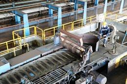 Doanh nghiệp Việt cần chủ động 'đối diện' với gia tăng bảo hộ thương mại