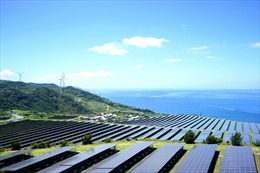 'Chạy đua' hòa lưới điện mặt trời trước 'giờ G'