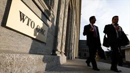 """Chốt danh sách ứng cử viên cho """"ghế nóng"""" tại WTO"""
