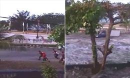 Kinh hoàng sóng thần biến phố thành sông cuồn cuộn nước trong nháy mắt