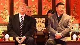Nhiều chuyên gia lo Tổng thống Trump 'sai lầm' khi đình chiến thương mại