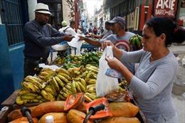 Kinh tế Cuba hướng tới sự phát triển mạnh mẽ hơn trong năm 2019