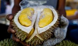 Có gì trong trái sầu riêng giá 23 triệu đồng?
