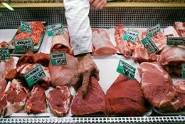 Ba Lan 'điêu đứng' do bê bối thịt bò bẩn