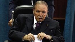 Chính trường Algeria bất ổn trước thềm bầu cử tổng thống
