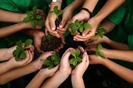 Philippines qui định học sinh, sinh viên phải trồng cây mới được tốt nghiệp