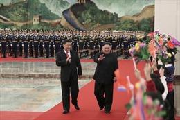 Chủ tịch Tập Cận Bình viết bài bình luận đăng trên báo Triều Tiên