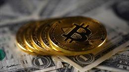 Tổng thống Mỹ, Chủ tịch FED không đặt niềm tin vào đồng tiền số