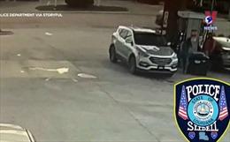 Chó lái xe băng qua đường bốn làn ở Mỹ