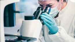 Mỹ sử dụng AI để điều chế siêu kháng sinh