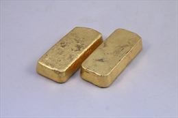 Cách ly tại nhà, 2 đứa trẻ 'nhặt' được thỏi vàng trị giá hơn 100.000 USD
