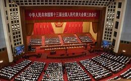 Chính khách Trung Quốc đề nghị ngừng phiên dịch tại họp báo, hội nghị