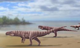 Cáu sấu tiền sử di chuyển bằng 2 chân