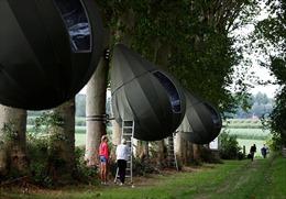 Dịch COVID-19 khiến người Bỉ nghỉ dưỡng trên cây